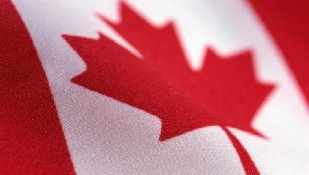 Ottawa. Impozitul pentru micile întreprinderi va scădea la 9%
